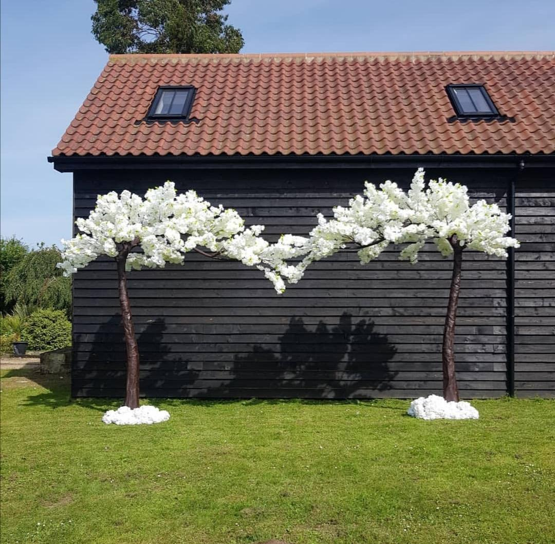 Blossom trees hire norwich
