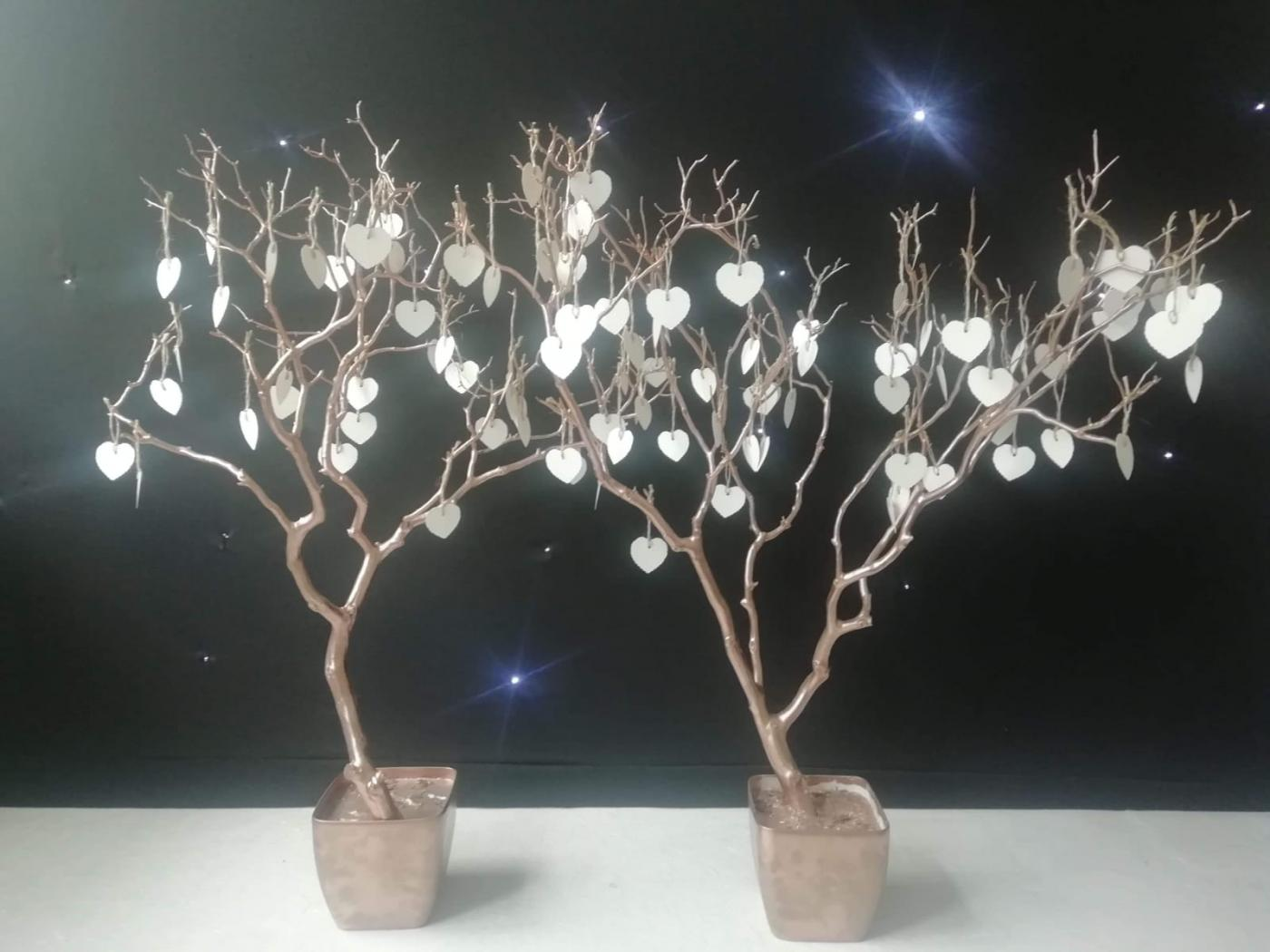 Rosegold wishing trees to hire in norwich showroom