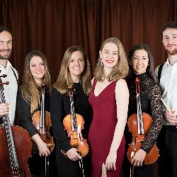 Kavolini Band