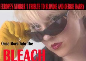 Into The Bleach